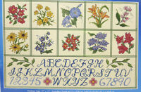 """Counted Cross Stitch Kit COUNTRY MEADOW SAMPLER 17"""" X 11"""" Janlynn flowers letter"""