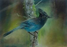 STELLER'S JAY Original Oil Hand Painted Wildlife Bird Art by JV 5x7in.