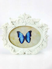 Oval Not Personalised Standard Photo & Picture Frames