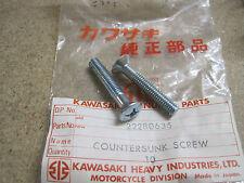 KAWASAKI NOS RARE OVAL ENGINE CASING SCREWS F1 F2 B1 B8  222B0635