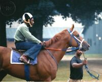 SECRETARIAT & CHARLIE DAVIS - ORIGINAL 8X10 1973 SARATOGA RACE COURSE PHOTO!