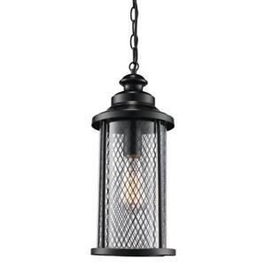 Outdoor 1-Light Industrial Hanging Lantern w Mesh Frame, Black Finish