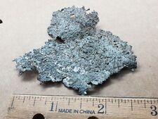 Native Silver specimen