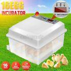 US Automatic 64 Digital Egg Incubator Hatcher 110-220V & 12V Temperature Control