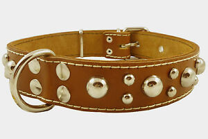 """Cane Corso Thick Real Leather Dog Collar Studs 1.5"""" wide 17""""-21.5"""" neck size"""