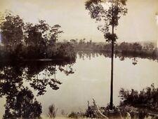 c1890, JW Beattie (att.), View on HUON River, LARGE albumen photograph, TASMANIA