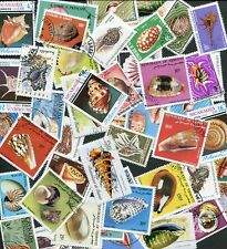 EXQUISITE COLLECTION OF 50 BEAUTIFUL SEA & SNAIL SHELL POSTAGE STAMPS!