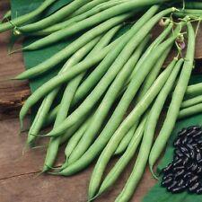 Bean Vegetable Plant Seeds