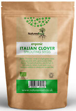 Organic Crimson Clover Sprouting Seeds-Superfood | italien microgreen Sprouts