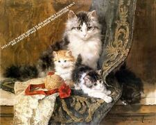 A Cat and Her Three Kittens by Henriette Ronner-Knip Artwork by Selby Prints