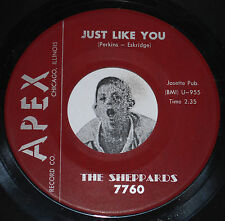 Doo Wop Soul 45~THE SHEPPARDS~Just Like You / Come Home~Apex 7760