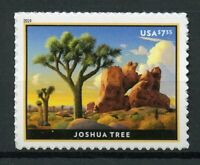 USA 2019 MNH Joshua Tree National Park 1v S/A Set Trees Parks Tourism Stamps