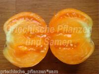 🔥 🍅 Tobolsk Tomate*alte Sorte Russl. kältetolerant*10 Samen