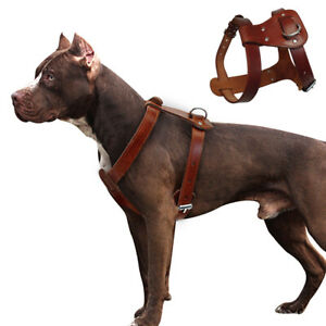 Brown Genuine Leather Dog Vest Harness Adjustable Heavy Duty Border Collie Boxer