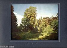 Freienwalde Umgebung 1913 orig. frühe Farbenphotographie, auf Karton montiert