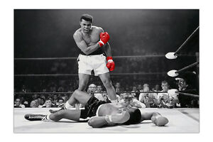 Black and White Muhammad Ali With Red Gloves Poster Wall Prints
