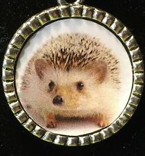 "Hedgehog Baby Charm Tibetan Silver with 18"" Necklace 3A"