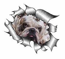 Classic Squarciata Strappato METALLO RIP & Britannico Bulldog Animale Domestico occhi tristi Auto Adesivo