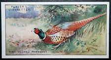 PHEASANT       Vintage Colour Card # VGC