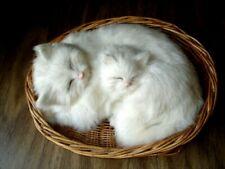 Mid-Century Vintage Cat and Kitten Asleep in Basket White Tan Rabbit Hair Fur