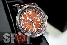 Citizen Promaster Eco Drive Sky NightHawk Men's Watch BJ7010-24W