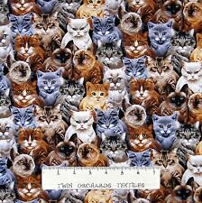Cat Fabric - Michael Searle Packed Kitten Faces  - Timeless Treasures YARD