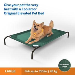 Coolaroo Raised Dog Beds - Green