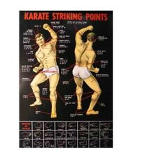Black Pressure Point Dim Mak Striking Points Poster - Shipped In A Tube!