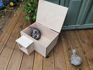 Hedgehog house Feeding Station