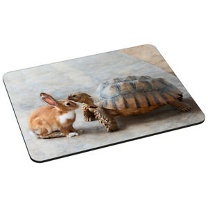 Mauspad Gaming Mouse Pad vernähte Ränder rutschfest, Rabbit Turtle Hase Kröte