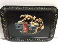 Vtg Tole Craft PAINT BY NUMBER Asian Motif SERVING TRAY Orig Box w MCM Graphics