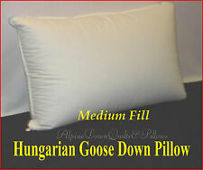 STANDARD SIZE PILLOW -  95% HUNGARIAN GOOSE DOWN - AUTUMN SALE