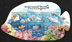 Hong Kong, China 2019 Underwater World S/S Turtle Dolphin Seahorse Butterfish 海底