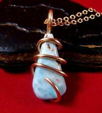 Natural Larimar Dolphin Stone Bronze Merlin's Gold Gemstone Pendant #101
