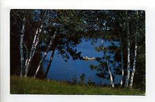 Greetings from Princeton Mn Minn (Mille Lacs, Sherburne Co) birches by lake 1957