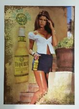 "New Anheuser Busch Tequiza Poster 20"" x 28"" Sexy Bar Girl Beer Tequila Vtg"
