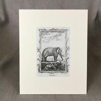 1791 Antique Elephant Print 18th Century Rare Engraving Buffon Book Plate