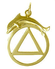 AA Alcoholics Anonymous Jewelry 14k Gold Charm #557