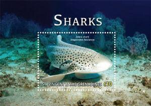St. Vincent 2015 - Zebra Shark, Ocean, Marine Life, Sea - Souvenir Sheet - MNH