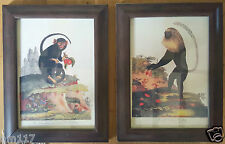 Pair of Framed Antique style Monkeys very realistic looking and unique to us