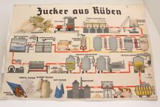 Old Schulwandtafel Wall Chart Table Sugar from Beet Culture Publisher