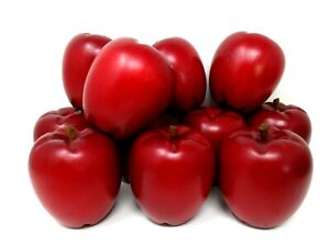 Wood Apples Red Delicious Wooden life size set of 11 fruit display centerpiece