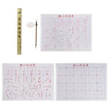 Chinese Calligraphy Painting Magic Practice Set Brush Water Write Cloth Reusable
