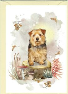 "Norfolk Terrier Dog A6 (4"" x 6"") Card - Blank inside - Design by Starprint"