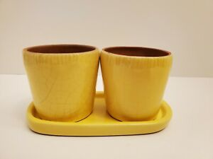 Pottery Barn set of 2 Planter Pots with matching Drainage Tray - succulents?