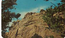postcard USA   Colorado Springs  kising Camels garden of the Gods Pikes Peak