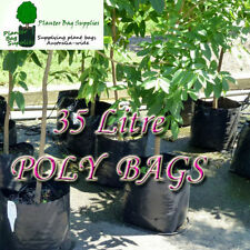 Grow Bags Boxes