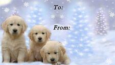 Golden Retriever Christmas Labels by Starprint - No 4