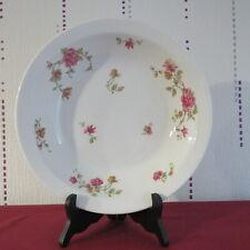 Soup Plate Limoges Porcelain Par Theodore haviland