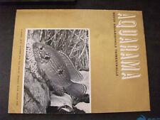 ** Aquarama n°24 Astronotus ocellatus / Chromileptes altivelis / Cryptocorynes